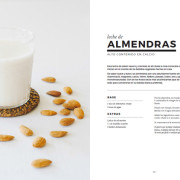 Libro digital eBook de leches vegetales y veganas